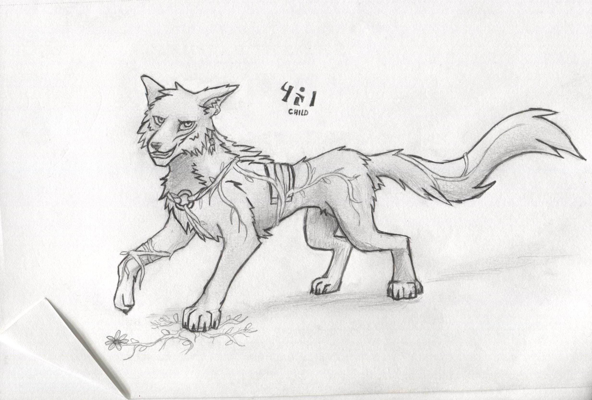 Child Wolf sketch