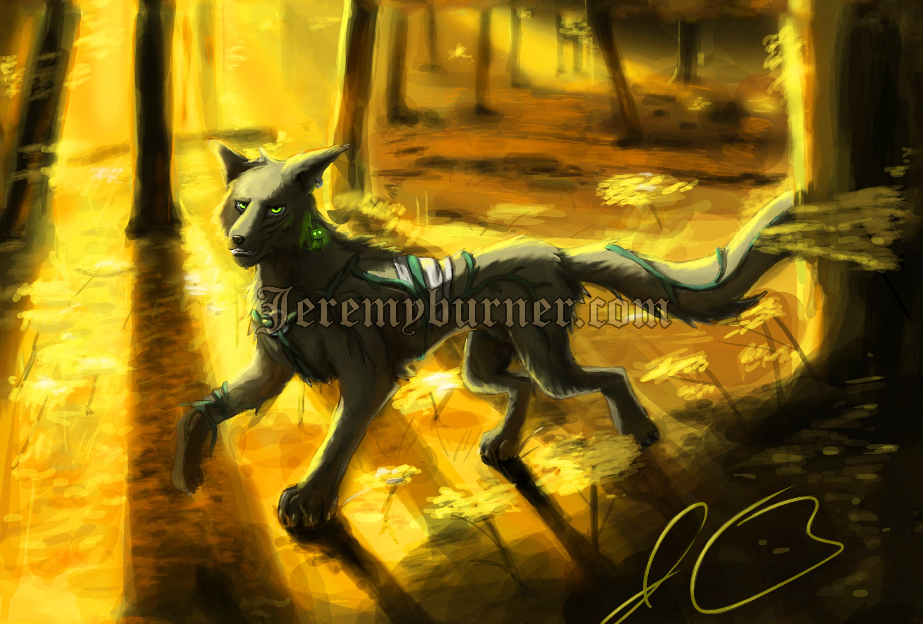 Child wolf fin